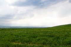 Beautiful spring and summer landscape. Lush green hills, high mountains. Bright green grass. Spring flowering grass. Beautiful spring and summer landscape. Lush royalty free stock image