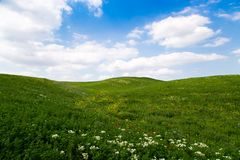 Beautiful spring and summer landscape. Mountain country road among green hills. Bright green grass. Beautiful spring and summer landscape. Lush green hills, high stock images