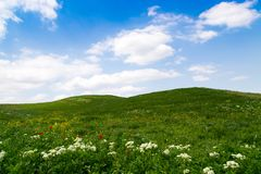 Beautiful spring and summer landscape. Mountain country road among green hills. Bright green grass. Beautiful spring and summer landscape. Lush green hills, high royalty free stock photos