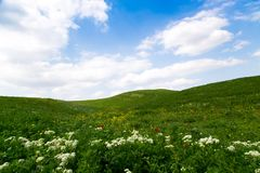 Beautiful spring and summer landscape. Mountain country road among green hills. Bright green grass. Beautiful spring and summer landscape. Lush green hills, high stock photo