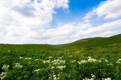 Beautiful spring and summer landscape. Mountain country road among green hills. Bright green grass. Beautiful spring and summer landscape. Lush green hills, high royalty free stock image