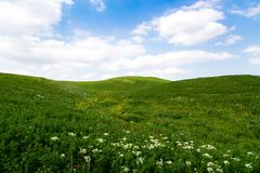 Beautiful spring and summer landscape. Mountain country road among green hills. Bright green grass. Beautiful spring and summer landscape. Lush green hills, high stock photography