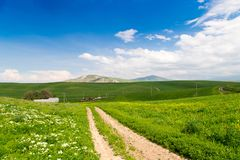 Beautiful spring and summer landscape. Mountain country road among green hills. Bright green grass. Beautiful spring and summer landscape. Mountain country road stock photography