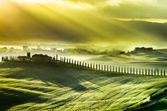 Beautiful spring sunrise over the valley of San Quirico d'Orcia Stock Photo