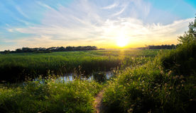 Beautiful Spring Sunset Royalty Free Stock Image