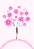 Beautiful spring tree Royalty Free Stock Photography