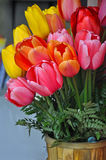 Beautiful spring tulips floral arrangement. Colorful spring tulips floral arrangement in basket Royalty Free Stock Photo