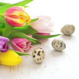 Beautiful spring tulips and quail eggs closeup. Easter concept Royalty Free Stock Photo