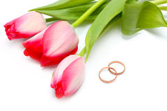 Beautiful spring tulips and wedding rings Royalty Free Stock Photos