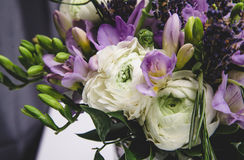 Beautiful spring wedding flowers white, violet, green buttercup ranunculus, fresia, lavender. Background soft macro Royalty Free Stock Image