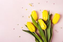 Beautiful spring yellow tulip flowers on pastel pink background for greeting message. Holiday mock up royalty free stock photos