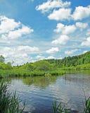 Beautiful springlike marshland and pond, german landscape Royalty Free Stock Image