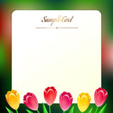 Beautiful square greating card with spring flowers Royalty Free Stock Image