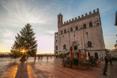 Beautiful square of Gubbio at sunset with christmas tree Stock Images