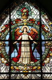 Beautiful stained glass window Stock Images