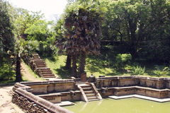 Beautiful stairway in water pool in ancient hinduist temple. Ruines of Beautiful  ancient old exotic  hinduist temple on sunny day in Sri Lanka Royalty Free Stock Photo