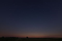 Beautiful Star Field at sunset Stock Images