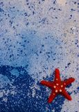 Starfish on blue sea background royalty free stock photos
