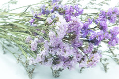 Beautiful statice flower bouquet on white background Royalty Free Stock Photo