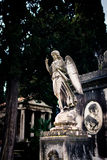 Beautiful statue of angel Stock Images
