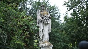 Beautiful statue of angel at the old cemetery stock video