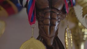 Beautiful statuette with awards for sports victories. Close up. stock footage