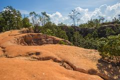 Beautiful steep cliffs,deep valleys and pine forests at Kong Lan Pai Canyon in Pai,Mae Hong Son province,Northern Thailand Royalty Free Stock Photo