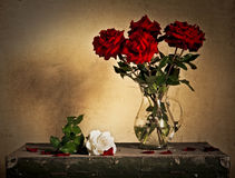Beautiful Still Life. With Jug and white and red roses Royalty Free Stock Photography