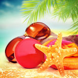 Beautiful still life of beach items Royalty Free Stock Images
