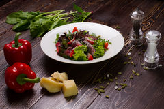 Beautiful still life of food. Meat salad. Stock Photo