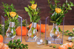 Beautiful still life of fruit and lamps Royalty Free Stock Photos