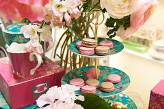 Beautiful still life with macaron biscuits. And flowers Royalty Free Stock Image