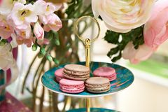 Beautiful still life with macaron biscuits. And flowers Stock Images