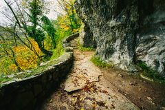 Beautiful stone pathway in the forest. Plitivce, Croatia Stock Photos