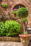 Beautiful stone porch full of plants in the old town Royalty Free Stock Image