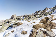 Beautiful stone river in the Winter mountain -Vitosha , Bulgaria. Stock Photos