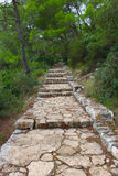 Beautiful stone staircase in the wood. The picture was made on one of the islands of Croatia Stock Images