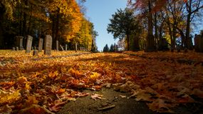 Beautiful Stone Tomb Graves In A Cemetery During The Fall Autumn Season. Many Orange Leaves In The Ground. Halloween Royalty Free Stock Photos