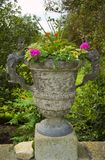 Beautiful stone urn with flowers Royalty Free Stock Photography