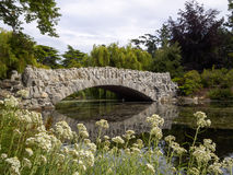 Beautiful Stone wall bridge over a river in a pretty park surrounded by nature. In Beacon hill park victoria- A beautiful stone bridge over the water surrounded Royalty Free Stock Photography