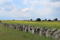 Beautiful stone wall that separates the fields and animals royalty free stock photography