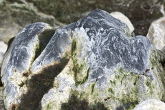 Beautiful stone with a wavy pattern of the Antarctic Strait. Royalty Free Stock Image