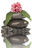 Beautiful Stones Royalty Free Stock Photos