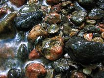Beautiful stones in the stream Stock Image