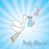Beautiful stork Royalty Free Stock Image