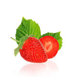 Beautiful strawberries Royalty Free Stock Image