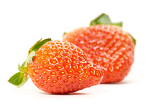 Beautiful strawberries. stock photography