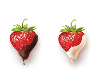 Beautiful strawberries in dark and white chocolate. Vector realistic illustration Stock Images