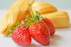 Beautiful strawberries and jack fruit.  Royalty Free Stock Images