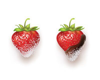 Beautiful strawberries in sugar, dark chocolate and coconut shavings. Vector illustration of realistic Stock Photo